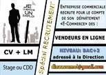 Vendeur En Ligne - Côte d'Ivoire