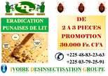Éradication Punaises De Lit - Côte d'Ivoire