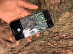 iPhone XS Max 64go - Côte d'Ivoire