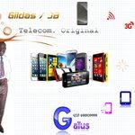Ets Gildas et JB Télécom-Orignal
