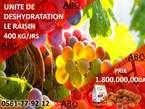 Unité de déshydratation des fruits - Algérie