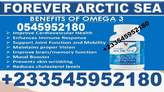 Forever Arctic Sea in Ghana - Ghana