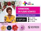 Formation en fleurs géantes - Guinée