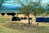 Commercial land for sale Naivasha  - Kenya