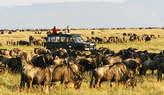3 Days Maasai Mara Safaris - Kenya