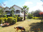 5 Bedroom House To Let. Karen Hardy - Kenya