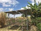 15  Acre farm land kajiado - Kenya