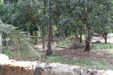 prime plots on sale at a prime area of North coast Mtwapa - Kenya