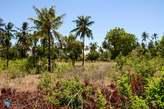 Kilifi 8 Km from Pwani University - Kenya