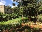 3/4 Acres Residential Plot - Kenya