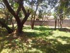 Nyali Developed Plot For Sale - Kenya