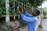 Best Gardening Service - Kenya