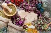 BioProGreen Herbs - Maroc