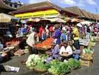 Sur Les Traces Du Zoma - Madagascar