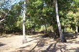 VENDS 45 LOTS Titrés & Bornés - Majunga (Madagascar) - Madagascar