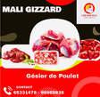 Mali Gizzard  - Mali