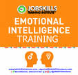 Emotional Intelligence Training - Nigeria