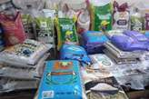 clean bag of rice for sale - Nigeria
