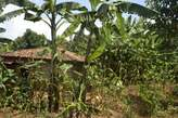 Beautiful and cheapest plot for sale - Rwanda