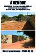 vends terrain ngaparou - Sénégal