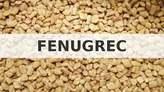 Fenugrec - Sénégal