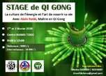 Stage De Qi Gong À Lomé - Togo