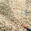 Cashew/korosho  ( types GRAINS) - Tanzania