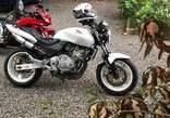 Honda hornet cbf 250 4 Selender bike for sale  - Tanzania