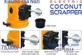 Coconut Scraper Rio - Tanzania