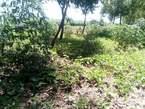 Plots for Sale Along Masaka Road - Uganda